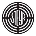 STEYR Engine Remaps